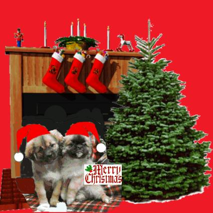 An den Beitrag angehängtes Bild: http://www.tibetspaniel-behrendt.de/Weihnachtskarte_Tibi_2007_c.jpg